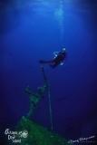 Roatan2017_Dive6_Odesyee_DougElseyPhoto_033 (2)