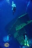 Roatan2017_Dive6_Odesyee_DougElseyPhoto_107 (2)