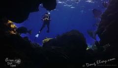 Roatan2017_Dive9_DougElseyPhoto_176 (2)